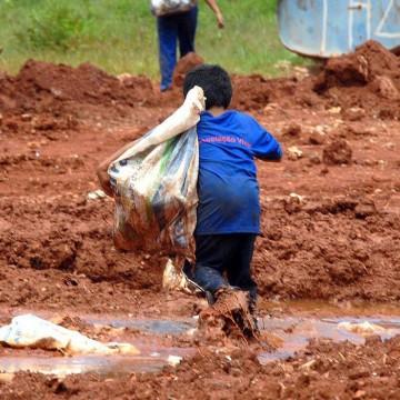 Trabalho infantil no mundo aumenta pela primeira vez em 20 anos