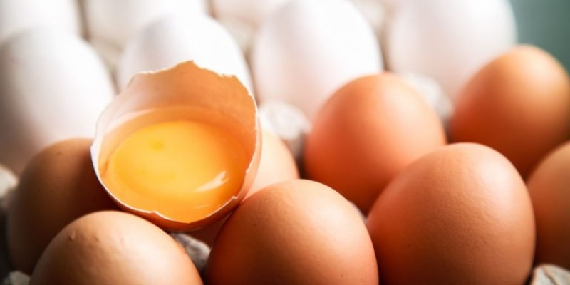 O estado é o quarto em produção avícola nacional