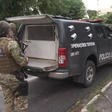 PC realiza operação contra grupo suspeito de incendiar ônibus na RMR