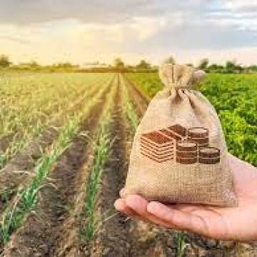 Ministério da Economia aumenta verba para Secretaria de Defesa Agropecuária