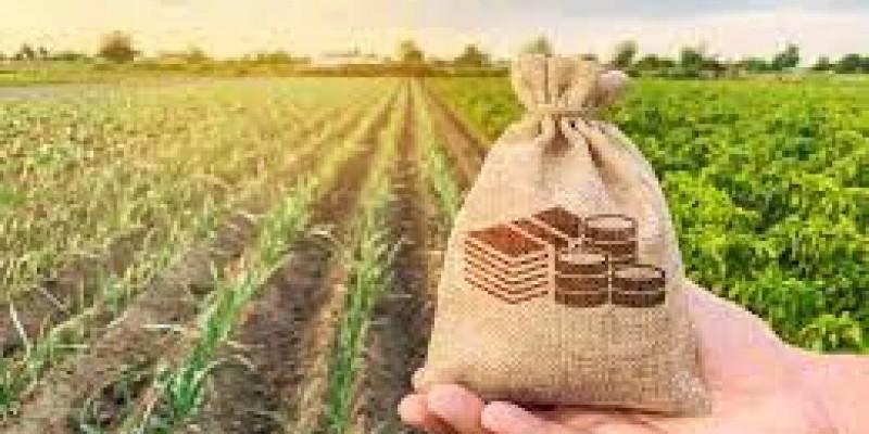 Crédito suplementar foi liberado depois de um remanejamento de recursos para a subvenção do seguro rural