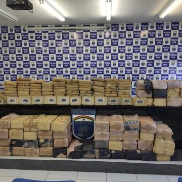 Polícia Civil apreende 651 quilos de skunk, conhecida como 'supermaconha'