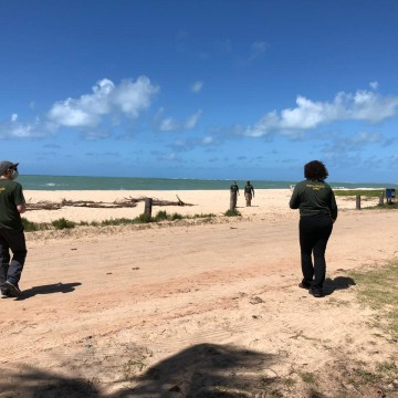 CPRH embarga obra na praia de Maracaípe, no litoral Sul