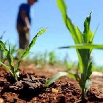 Panorama CBN: Produção rural