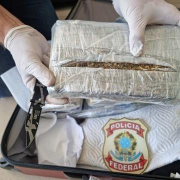 Mulher é presa com 10,6 quilos de maconha escondidos em bagagem no Aeroporto do Recife