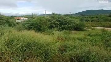 Corpo é encontrado próximo a BR-232 em Caruaru na manhã de Segunda-feira (20)