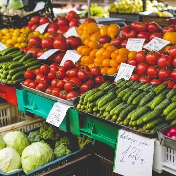 Recife é considerada a capital das feiras orgânicas, de acordo com pesquisa