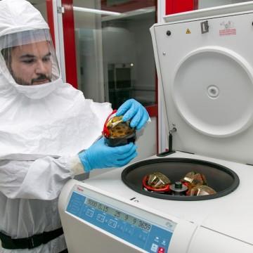 Sequenciamento genético do novo coronavírus que circula em PE é apresentado