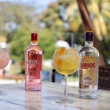 Beam Suntory agora aposta no gin para crescer no Nordeste