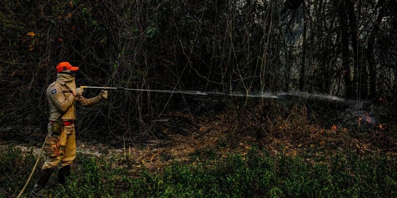 Recursos devem atender aos 79 municípios que sofrem com queimadas