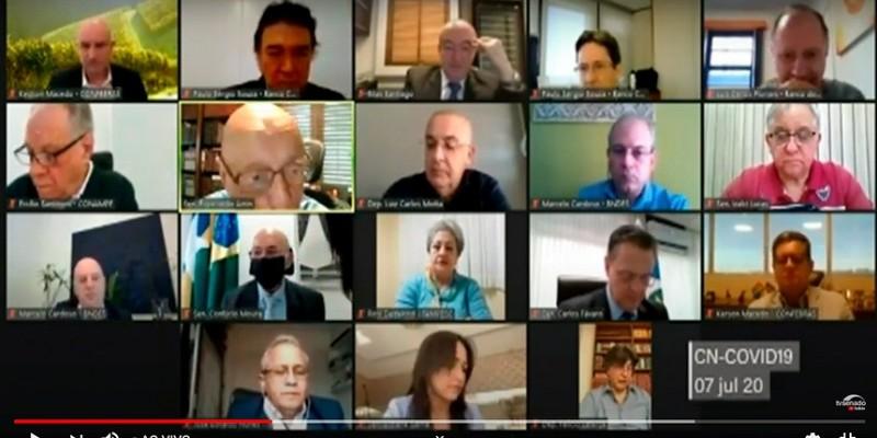 Profissionais em educação participam de audiência remota da comissão mista que acompanha as políticas públicas adotadas durante a pandemia