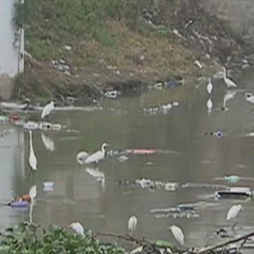 CBN Sustentabilidade: Rio Ipojuca