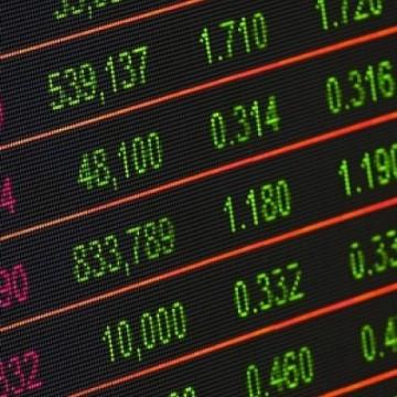 Com decisões acertadas, Multinvest Capital vê crescimento bater 180% em 2019