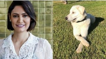Cão adotado por Família Bolsonaro já tinha dono
