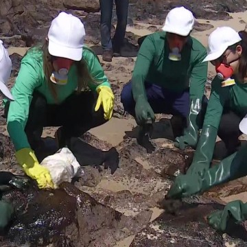 Produção pernambucana: biogel é usado para limpar óleo que atinge praias do estado