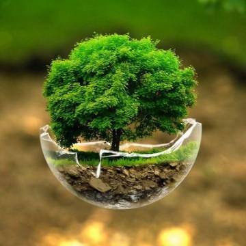 Três datas no mês de março celebram a importância da conscientização ambiental