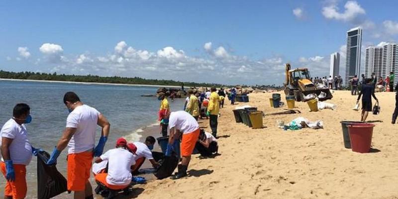 Pesquisa da Fundaj aponta que em Pernambuco foram 260 hectares de corais e 692 hectares de mangues e vegetação nativa podem ter sido afetados pela contaminação em 11 municípios.