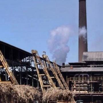 Usina inicia moagem de cana para mercado interno e geração de energia