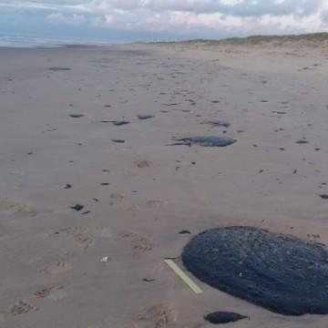 Nordeste pede investigação federal para apurar a origem do petróleo que poluiu praias