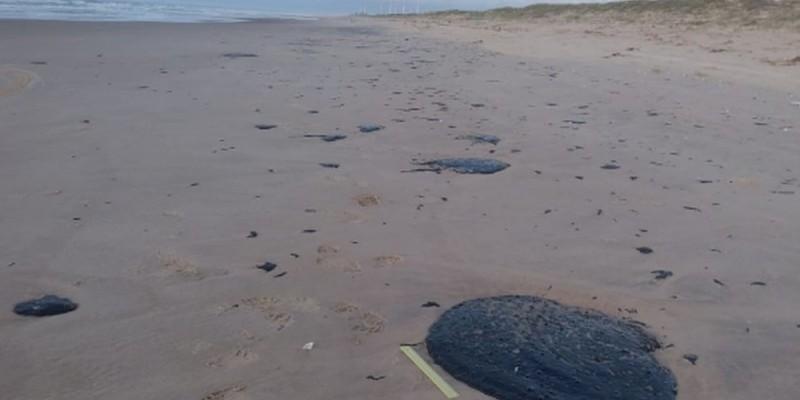 A limpeza das praias já começou em muitos pontos contaminados