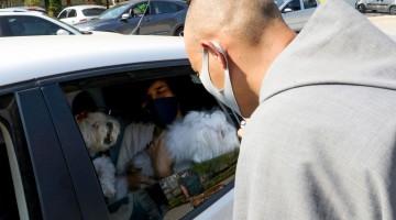 Latam suspende venda de transporte de pets no porão das aeronaves