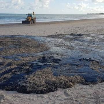 Estudos apontam que derramamento de óleo não foi associado apenas a navios