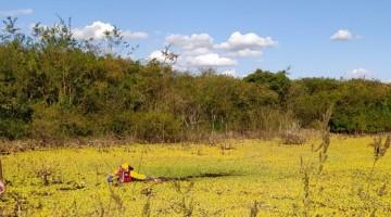 Corpo de mulher é encontrado em açude, em Caruaru