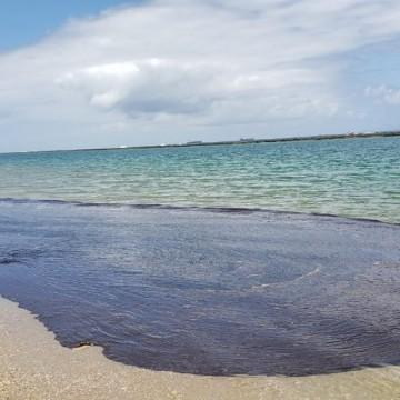 Ministro da Defesa e comandante da Marinha visitam Suape para avaliar óleo no litoral