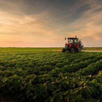 Agronegócio brasileiro bate recorde de receita com exportações em agosto: US$10,90 bilhões