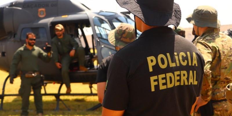 Os plantios foram localizados através de levantamentos feitos pela Polícia Federal em algumas ilhas dos Rio São Francisco, na Região de Orocó, Cabrobó, Carnaubeira da Penha, Floresta e Belém do São Francisco no sertão pernambucano