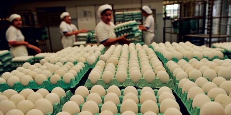 """""""Não tem como produzir com um custo elevado para vender num preço que não é compatível com o que você produz"""", diz Josimário"""