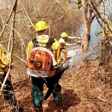 Focos de incêndio controlados em Taquaritinga  do Norte