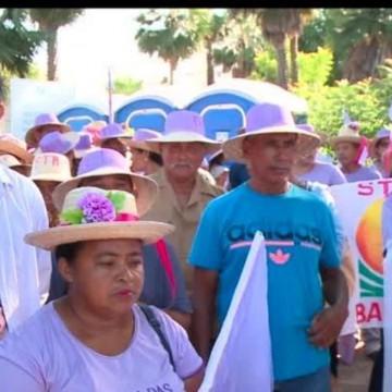 Entidades e grupos sociais de Pernambuco se organizam para a Marcha das Margaridas