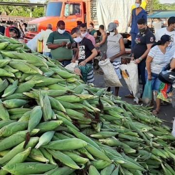 Procura por milho no Ceasa supera expectativa de vendas