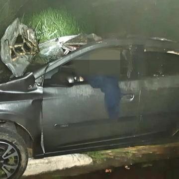 Motorista fica ferido e três cavalos morrem após acidente na BR-408