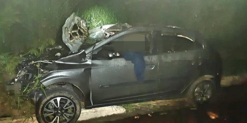 De acordo com a Polícia Rodoviária Federal o motorista teria atropelado os animais que estavam na via