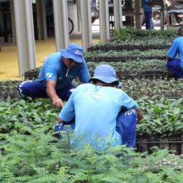 Reincidência criminal de ex-detentos que estão no mercado de trabalho é considerada baixa