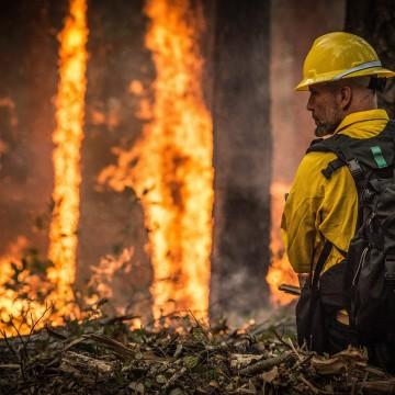 Incêndio atinge parque de conservação de Caatinga no Sertão