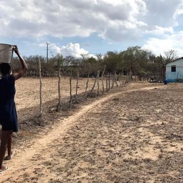Panorama CBN: Situação de estiagem em Pernambuco