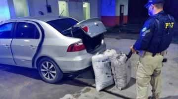 PRF volta a apreender grande quantidade de droga em São Caetano