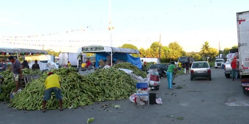 O tradicional plantãojunino já começou, vai até as 18h da noite do dia de São João, 24 de junho