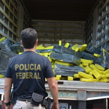 PF se desfaz de drogas apreendidas em operações policiais