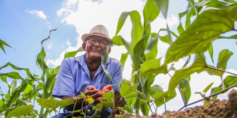 Até este sábado (27), outras cinco associações serão beneficiadas, recebendo cerca de 160 kg de sementes de milho