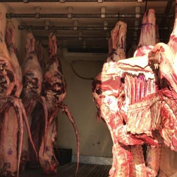 Caminhão com 1,3 tonelada de carne sem nota fiscal é retido em Gravatá