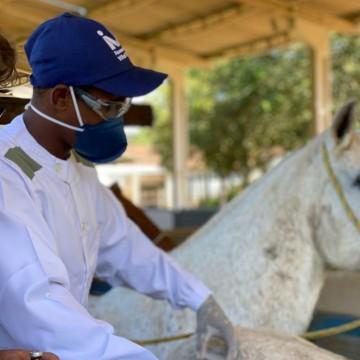 Anvisa autoriza a realização de testes de soro anti-covid em humanos
