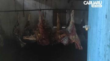 Polícia apreende 4 toneladas de carne de cavalo em Limoeiro