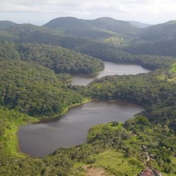 CBN Sustentabilidade: Dia da Mata Atlântica