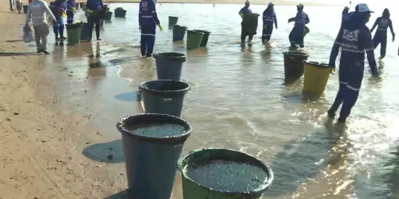 Segundo a Secretaria de Meio Ambiente e Sustentabilidade de Pernambuco já foram recolhidas 489 toneladas de de resíduos de petróleo no litoral do estado.