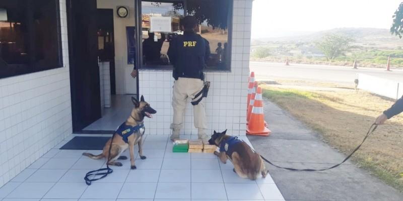 Rapaz disse aos agentes que pretendia levar o entorpecente para Caruaru, no Agreste