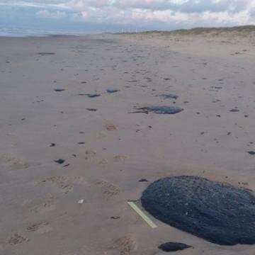 Aparecimento das manchas de piche no litoral é discutida em reunião no Recife